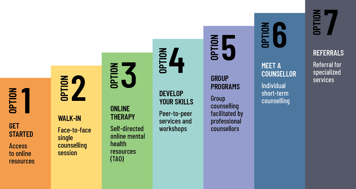 Diagram of the 7options of the Stepped Care model